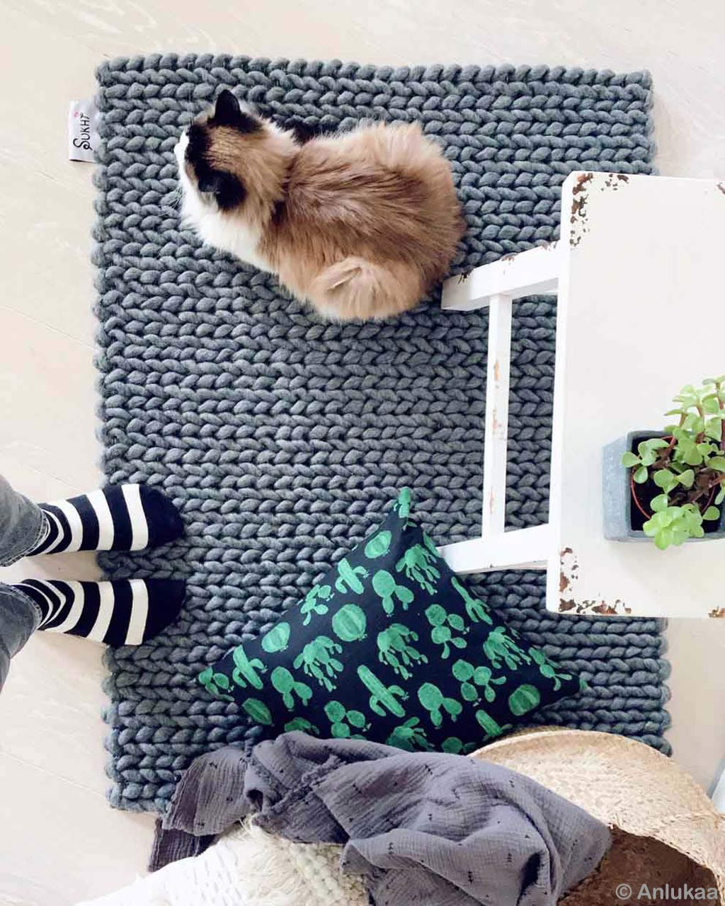 cat cushion vase and socks made in india modern carpet