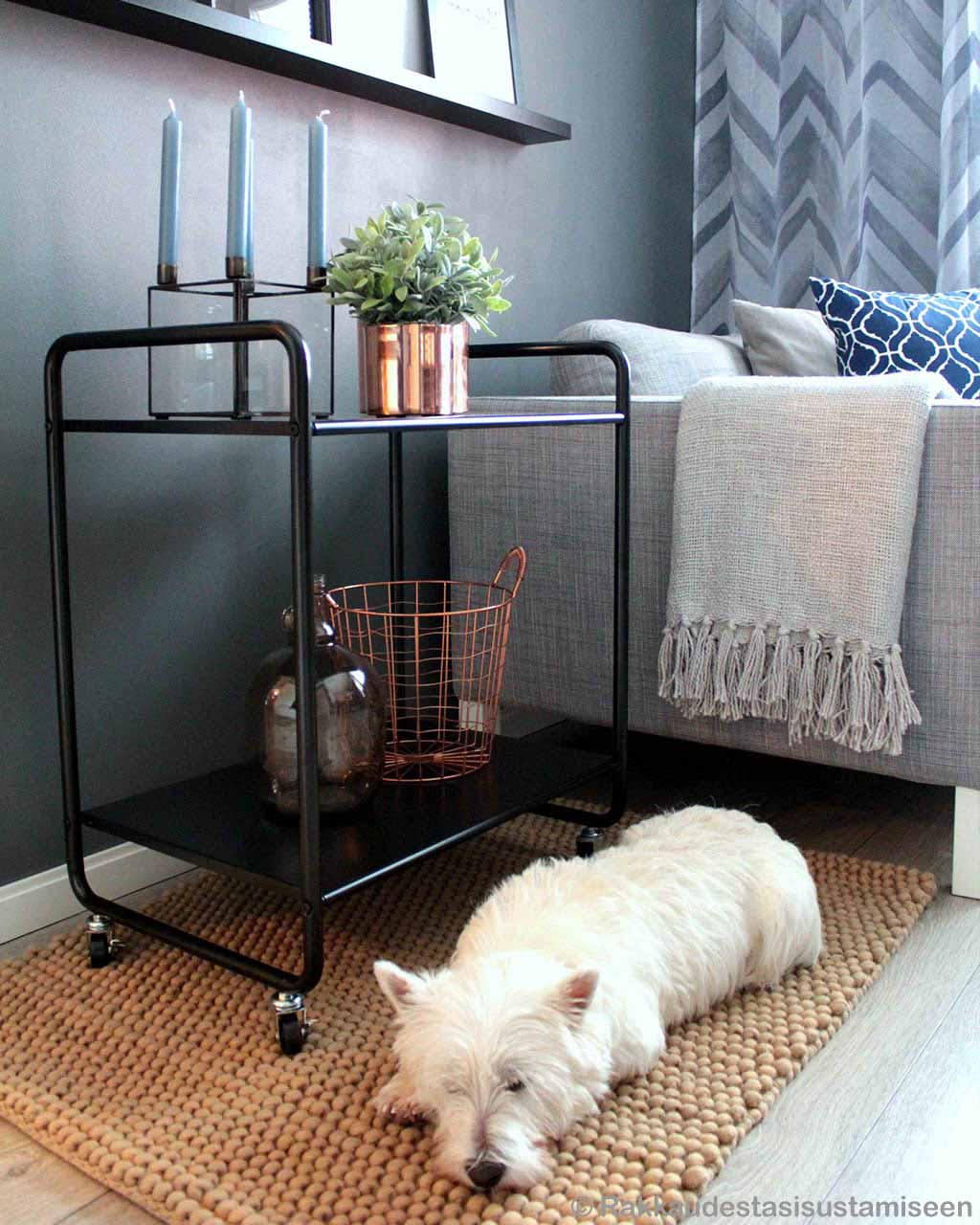 dog trolly and basket india contemporary geometric rug