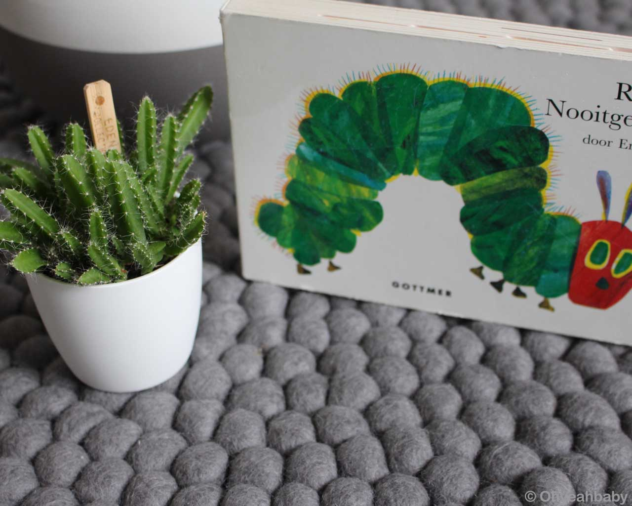 hand knotted green cactus in white pot kitchen rugs