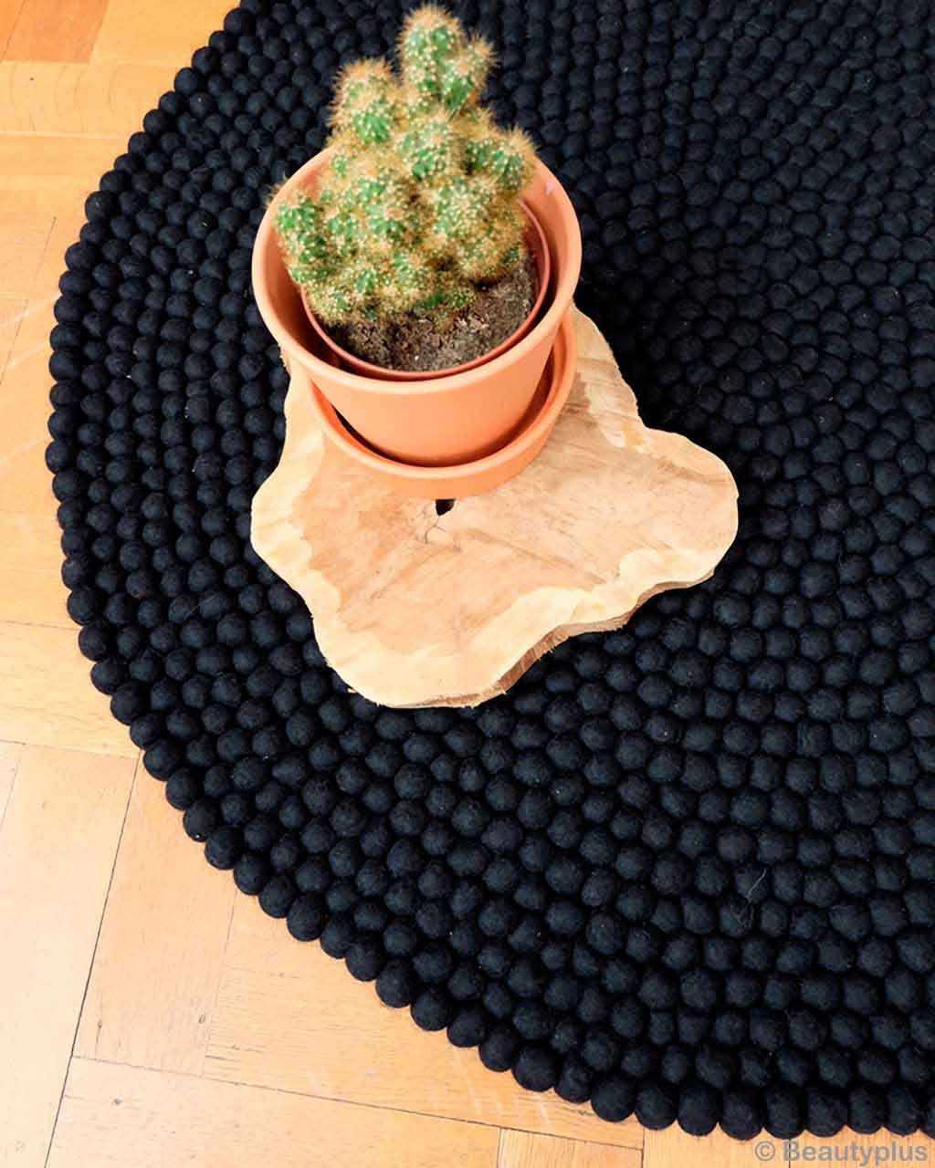 pot with cactus on floor nepalian made modern rugs