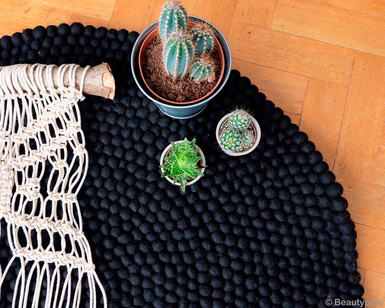 three pots with cactus plant nepal designer carpets and rugs