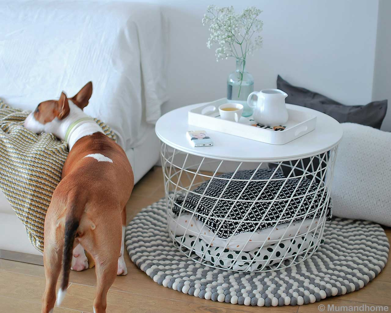 pitbull dog round carpets scandinavian design 1